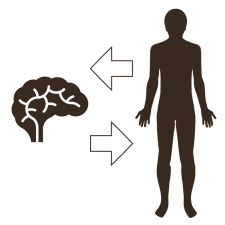 illustration of a generic man with arrows pointing to and from a human brain