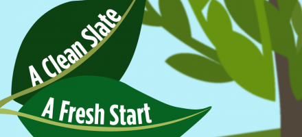 "illustration of a leaf with the words ""A Clean Slate"" and another leaf with the words ""A Fresh Start"""